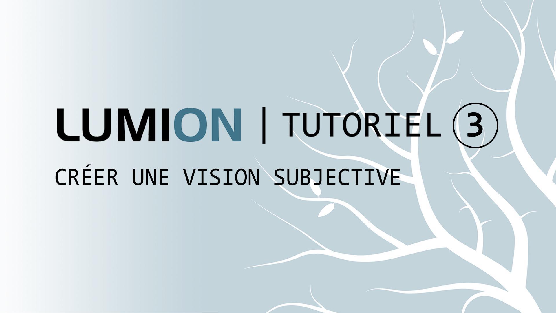 Tutoriel 3: Créer une vision subjective